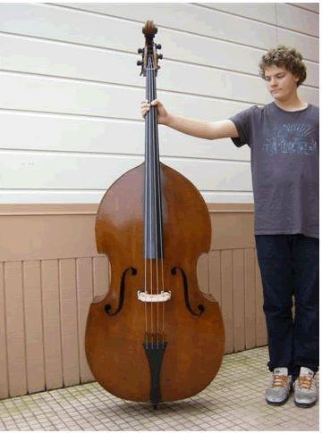 international society of bassists basses for sale. Black Bedroom Furniture Sets. Home Design Ideas